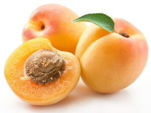 kayisi-apricot2